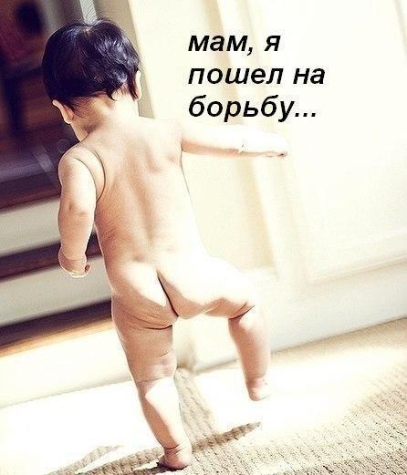 Не одежда украшает девушку, а борец идущий рядом | ВКонтакте