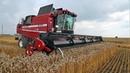 ПАЛЕССЕ GS2124: уборка высокоурожайных хлебов