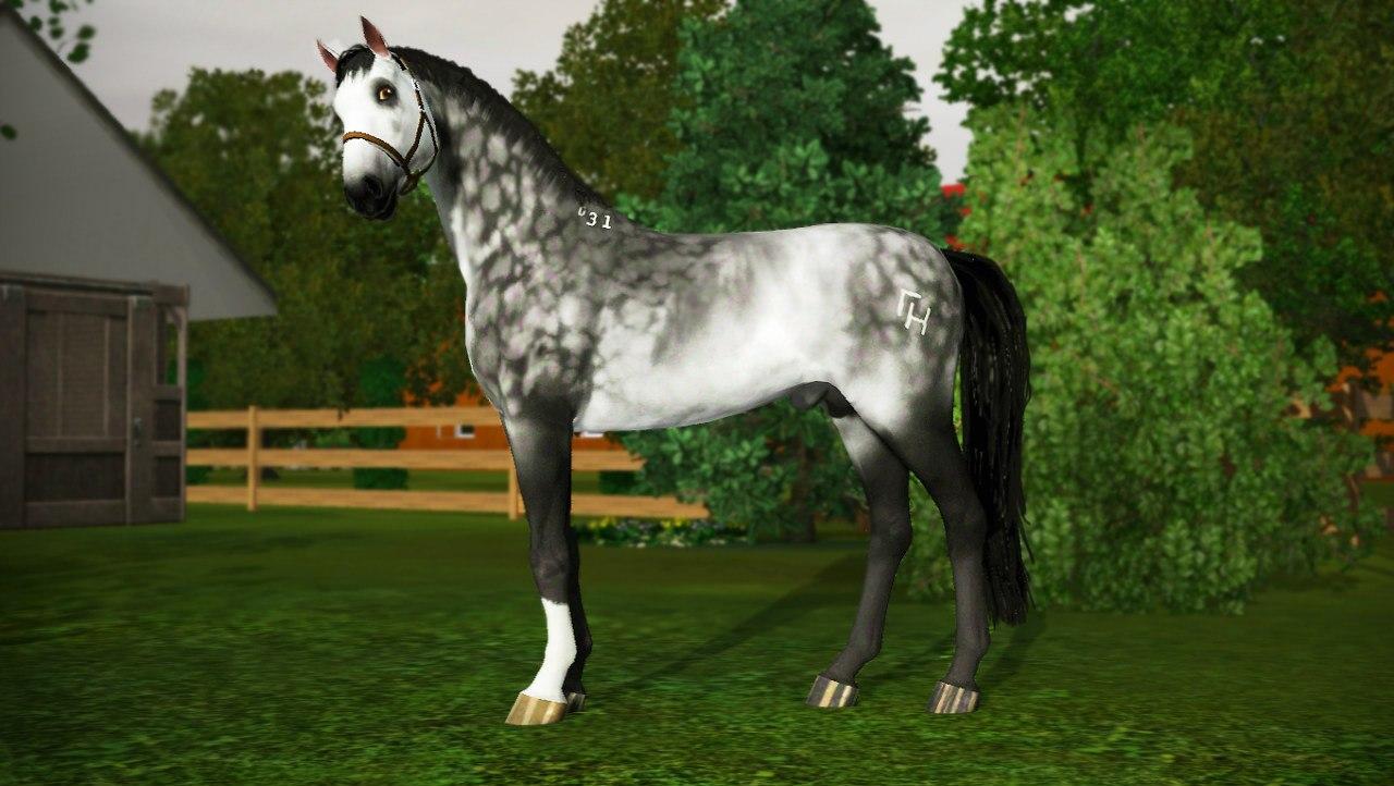 Заявки на удаление лошади из списка - Страница 2 EP117GLmeyQ