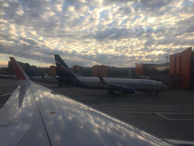 Путешествие в Молдавию и Приднестровье. Шереметьево