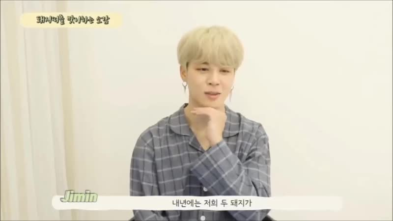 Thoughts on greeting the year of the pig [jimin]