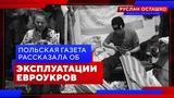 Польская газета рассказала об эксплуатации евроукров (Руслан Осташко)