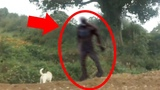 5 Scary Things Caught On Camera &amp In Real Life - BIGFOOT