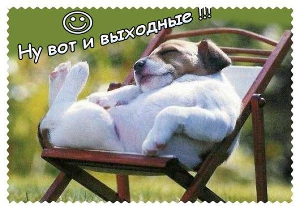http://cs417027.vk.me/v417027399/9569/AoMWHZzkTr8.jpg