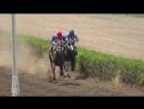 15 17 2018г ПРИЗ Мемориал А И Майстренко для лошадей 2 х лет ч к Дистанция 1400 метров
