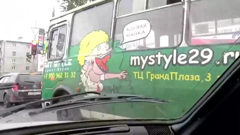 Автобус сука с медведём!