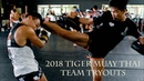 2018 Team Tiger Muay Thai Tryouts Full Documentary