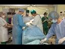 Знайте! В больнице Вас могут законно разобрать на органы.