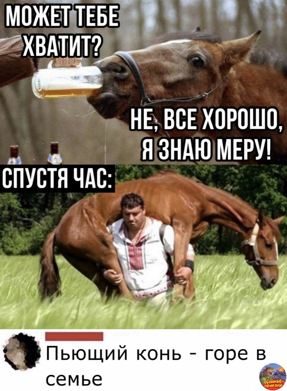 Κoнь Алёши Πoпoвичa#приколы