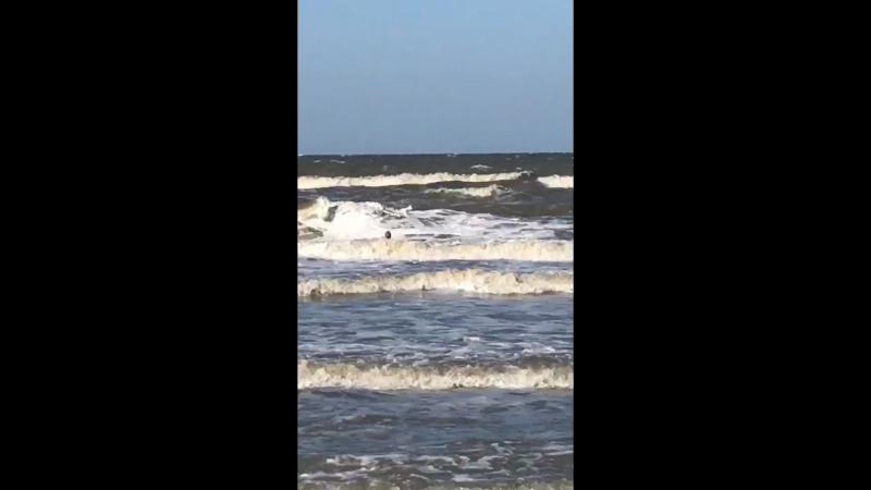 Бьюсь об волны 😁