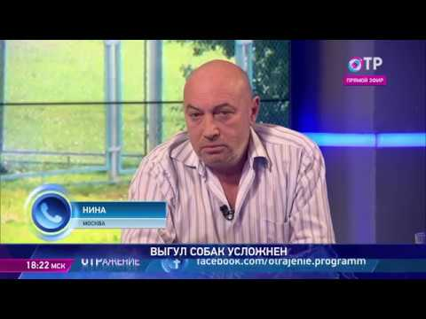Евгений Цигельницкий: Опасна абсолютно любая собака, если у нее безответственный хозяин