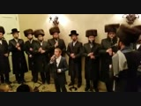 The Shira choir - Avrum Chaim Green - At Chupa Event