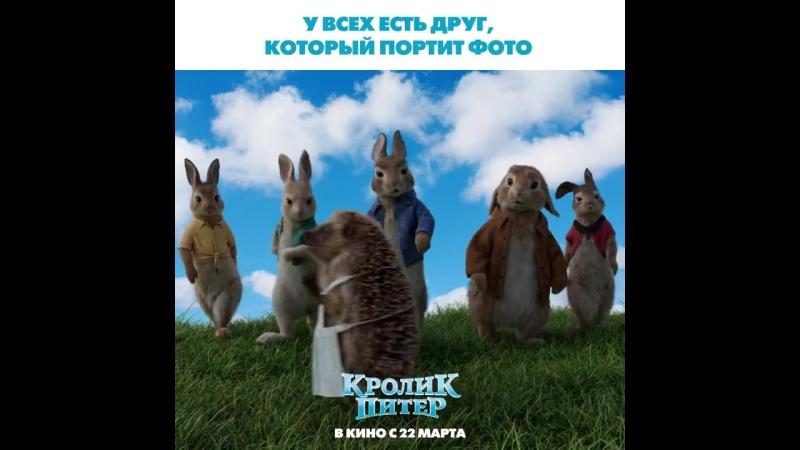 Кролик Питер в кино с 22 марта!