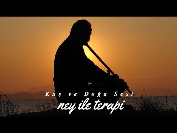 Ney Sesi ♫ Ney ile Terapi смотреть онлайн без регистрации