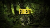 The FOREST Кошмар ДЖУНГЛЕЙ !!