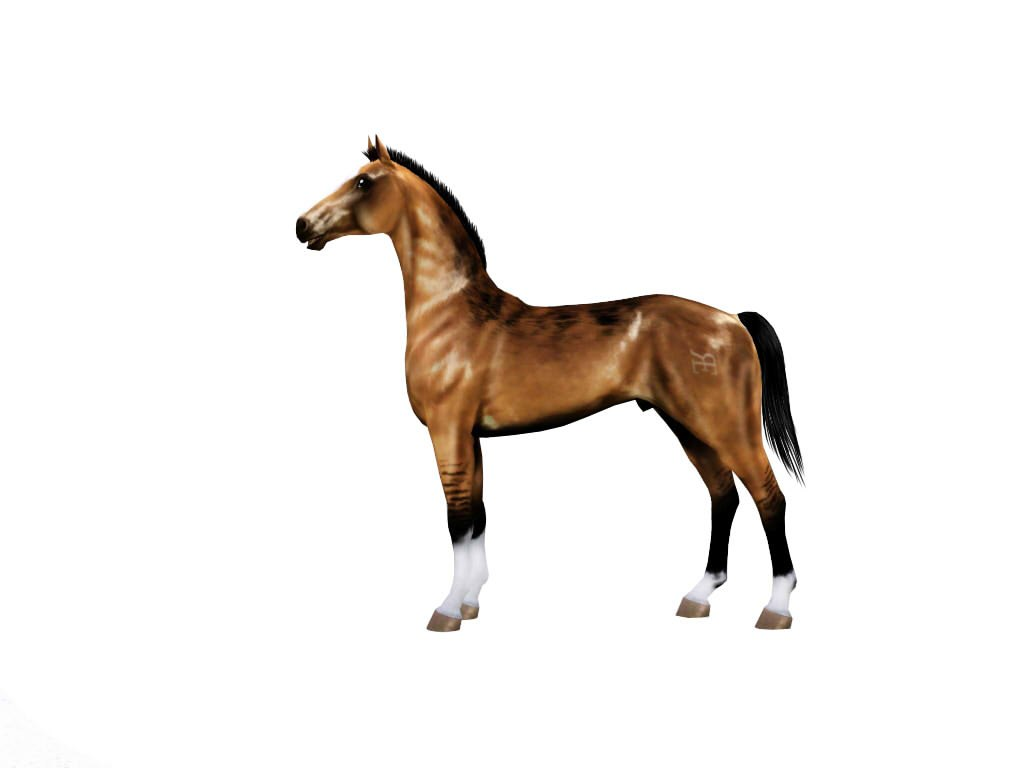 Регистрация лошадей в RHF 1.1 - Страница 2 Le6S7zTn5BE