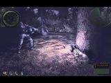 Сталкер НС 2011-ДМХ 1.3.4. Разлад в группировке наёмников
