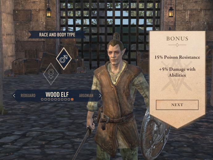 Лесные эльфы в The Elder Scrolls Blades