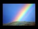 Over the Rainbow -Alex McGinty