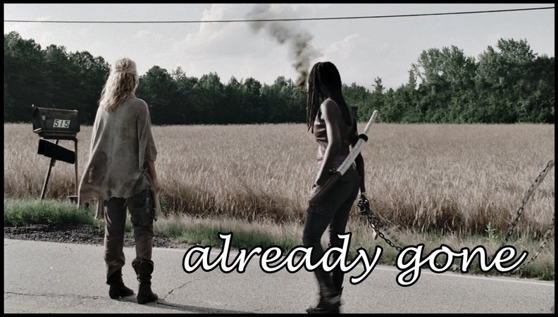 Already gone || andrea and michonne (fac)