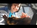 Я и трёхцветная стамбульская котяша