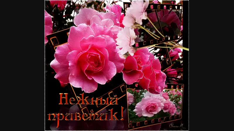 Doc287172391_487764683.mp4