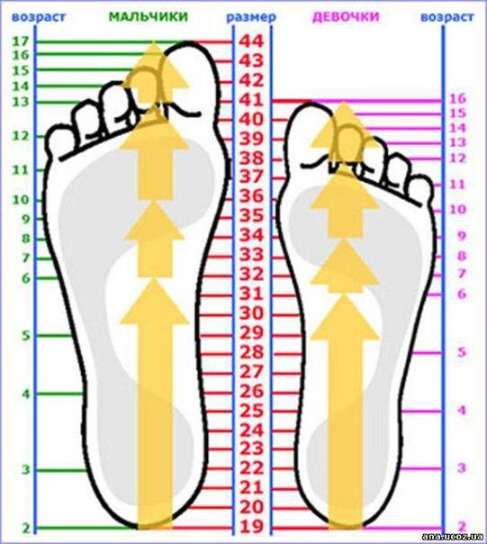 Таблица размеров стоп для детей