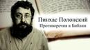 Противоречия в Библии. Пинхас Полонский