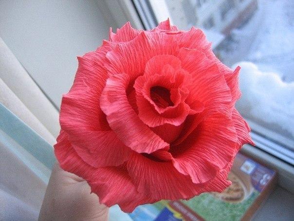 Роза из гофрированной бумаги (8 фото) - картинка