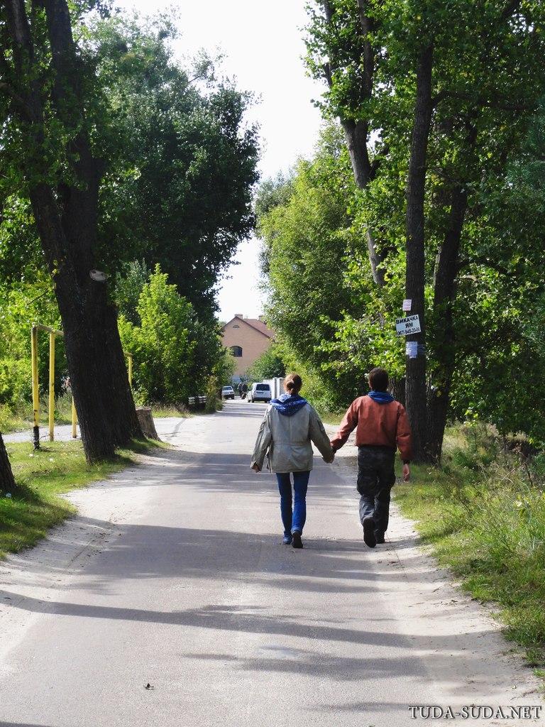 Житомир лес