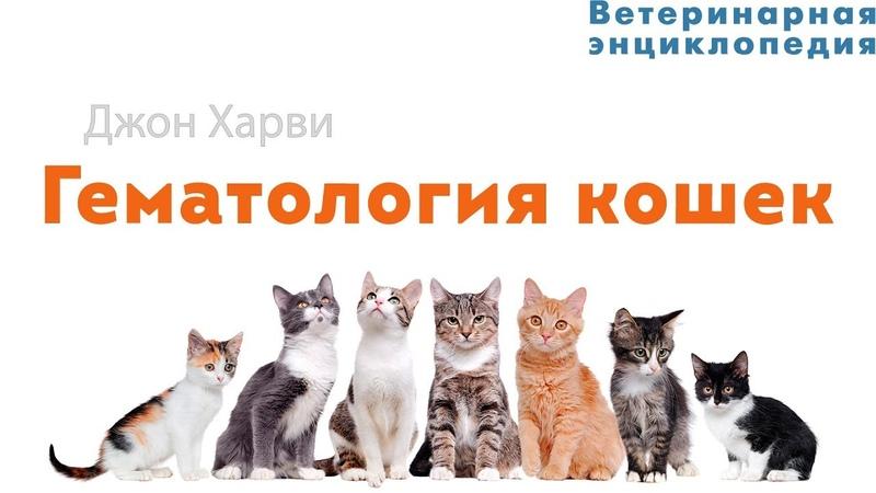 Гематология кошек
