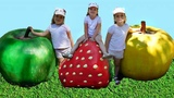 Learn Colors with big fruits video for kids