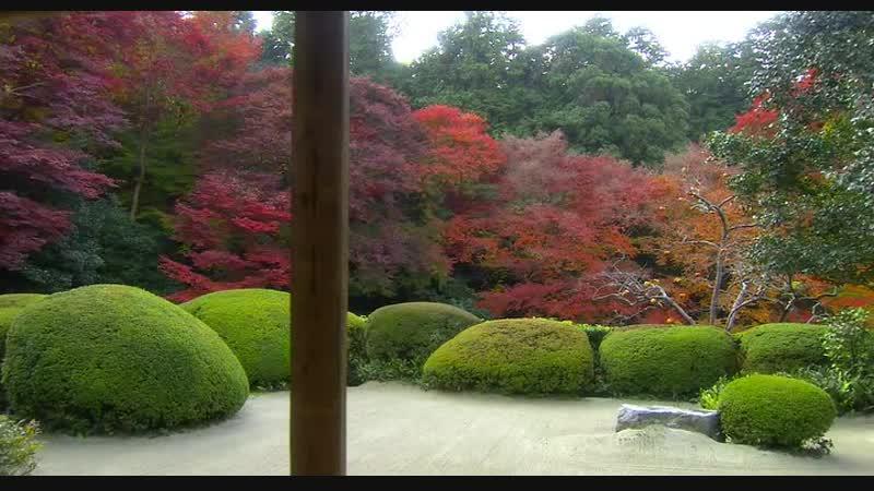 Osennij.Tsvet.Kioto.2007.Music.BDRip.XviD.AC3.-HQ-ViDEO