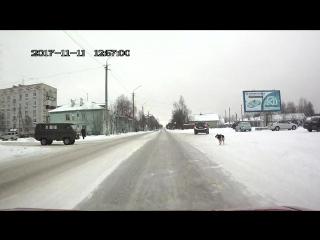 пёс стритрейсер :))))