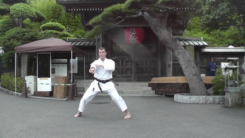 Ката Текки-Сандан Валерий Балашов 5й дан JKA каратэ сётокан Япония 2018