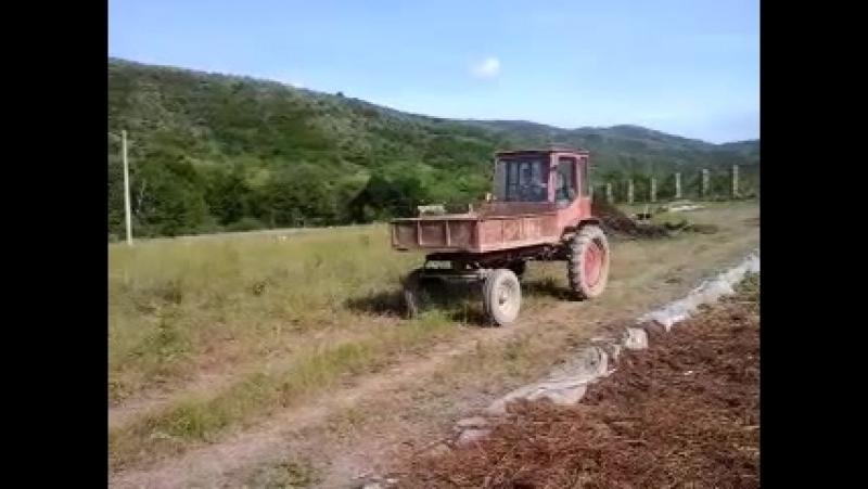 Я с садовника Сергеем Анатольевич ем работаю на тракторе т16