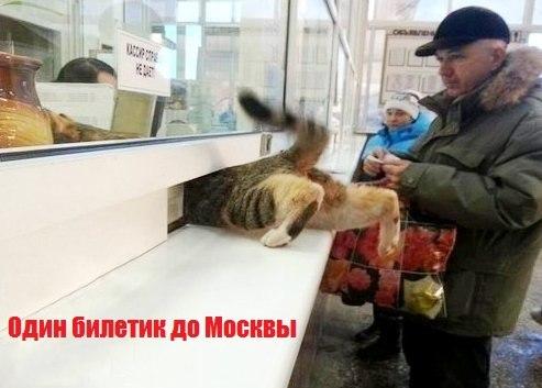 прикольные открытки со склада в москве: