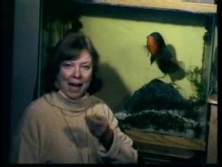 Карен Прайор рассказывает про дрессировку рыб.