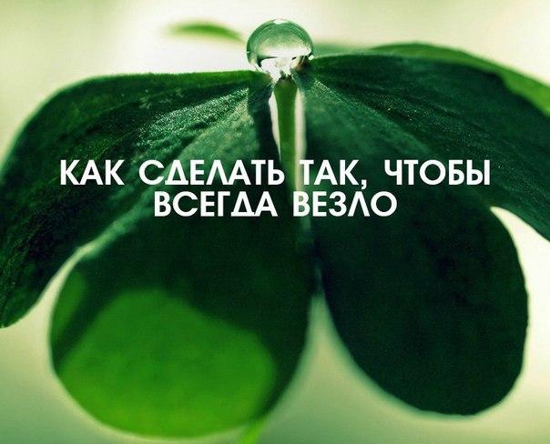 https://pp.userapi.com/c543105/v543105047/37631/Vkv1wsgYC7g.jpg