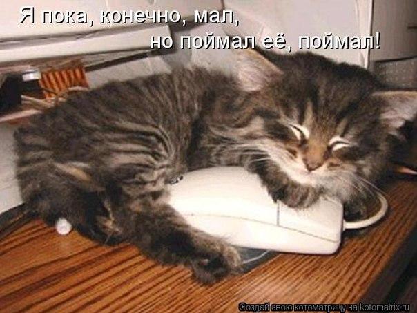 http://cs309131.vk.me/v309131513/6b6a/KSI5vhiV3Io.jpg