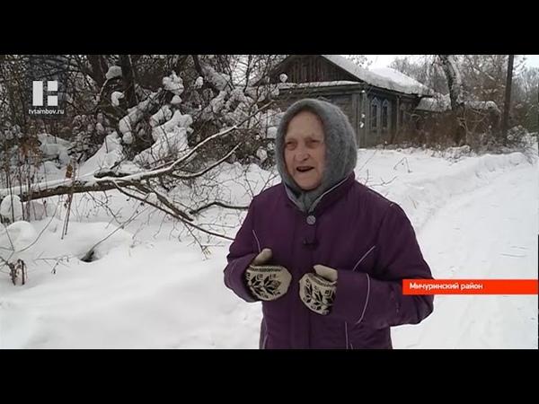 В опустевшей деревне Измайловка пенсионерка ходит за хлебом на лыжах