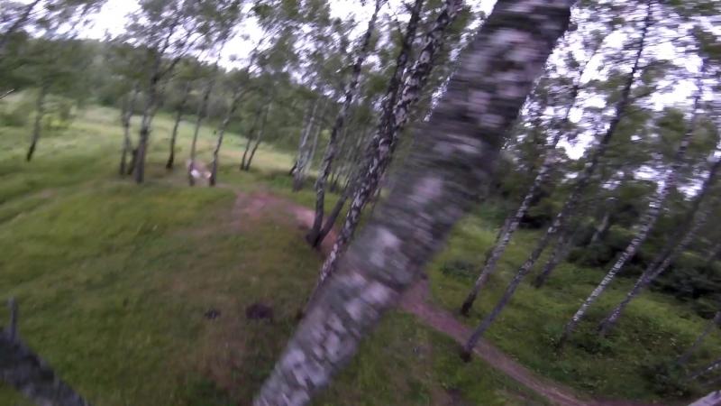 Полёт в лесу без нарезки