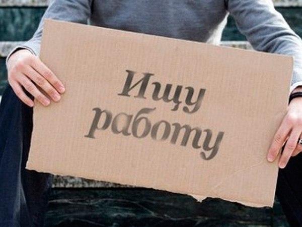 В Таганроге проводится обследование горожан по проблемам занятости