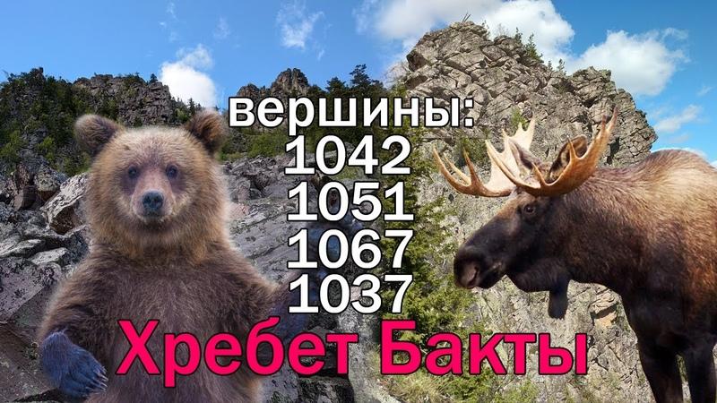 хребет Бакты (1042,1051,1067,1037) от меня убежал Медведь! нашел рог Лося!