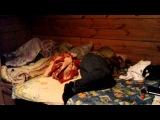 Как я в последнюю ночь монтировала фильм Вадима Самойлова ''Решай-ся''