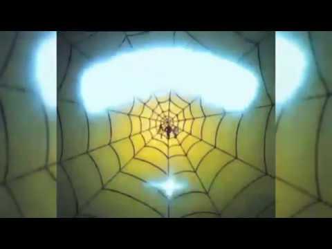 Человек-паук и его удивительные друзья (1981-1983 гг.) [Заставка]