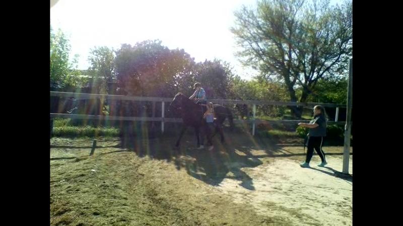 Семейный конный клуб Живая тропа. Панин Влад (ДЦП, 12 лет) осваиваем рысь. Май 2018.2