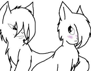 Коты воители шаблоны котов для раскраски