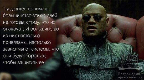 http://cs543104.vk.me/v543104459/16619/VEgN4Lq0Q2w.jpg