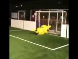 R.I.P. Pikachu (VHS Video)